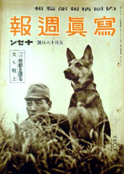Japanese_dogs_WW2 propaganda. Source WW2 Film Inspector