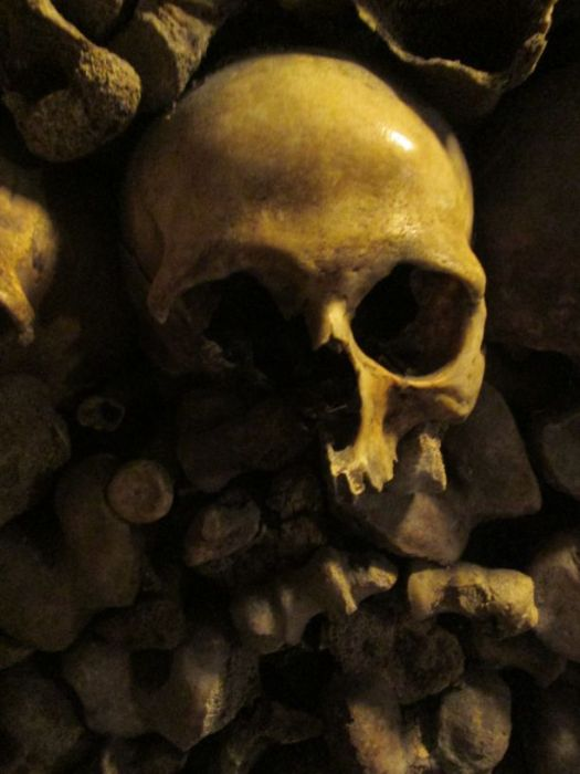 Human skull, close up - Paris Catacombs