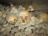 Looking at Skulls in Paris Catacombes