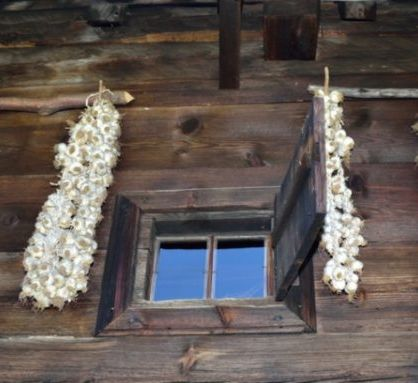 Garlic in Romanian Folklore