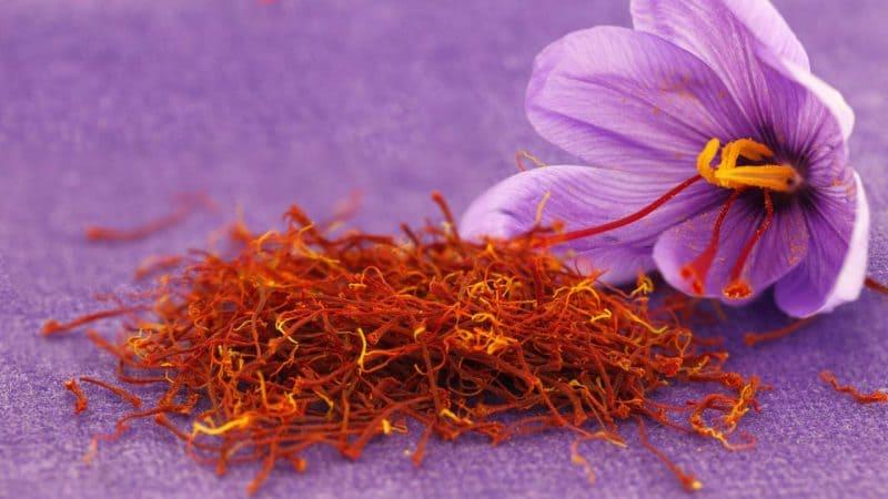 saffron-alluringrecipes.com