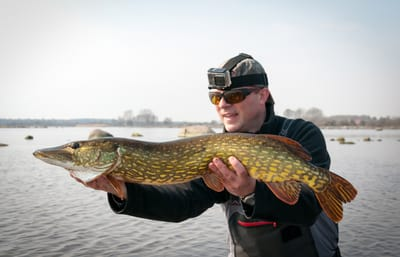 Pike fly fishing is some of the best fishing you can do.