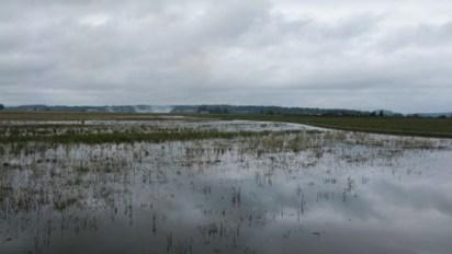 Flooded crop land. Photo credit: nrcs.usda.gov