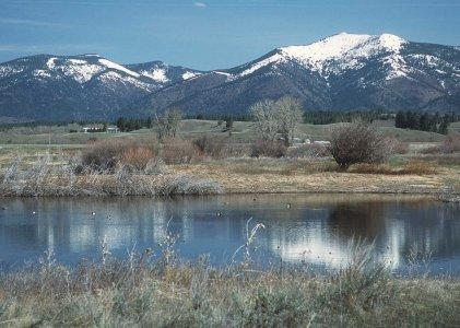 Pond - photo credit: publicdomainfiles.com