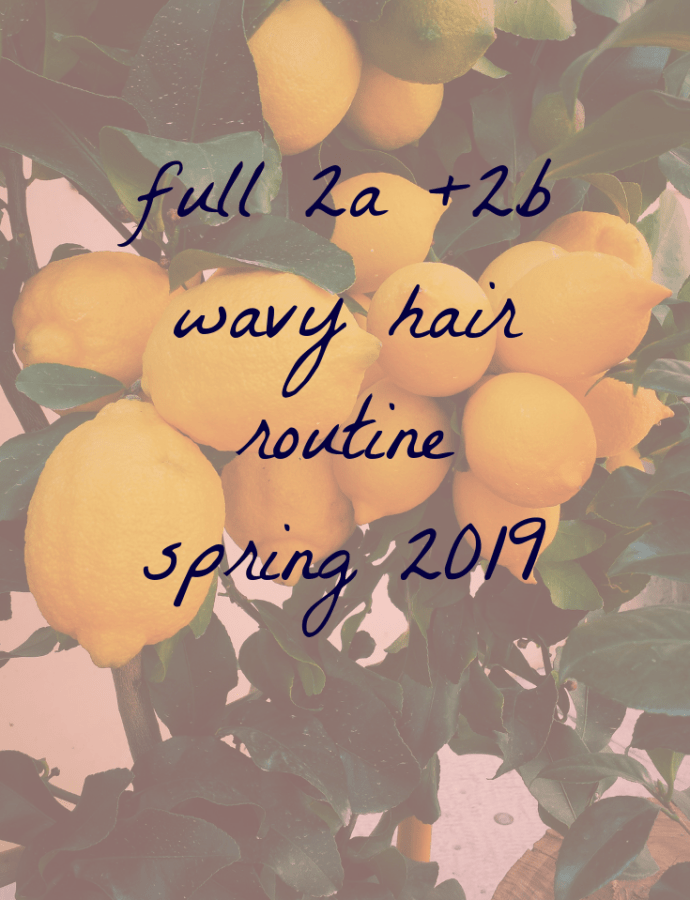 easy 2a/2b wavy hair routine – spring 2019