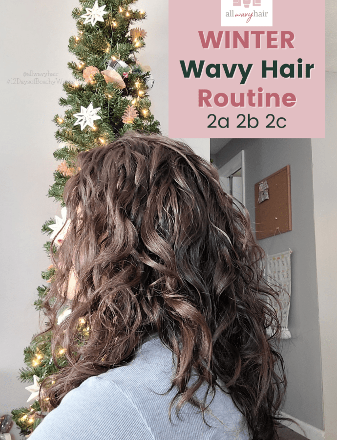 2021 Winter Wavy Hair Routine / 2a 2b 2c 3a Routine for Wavy Hair CGM