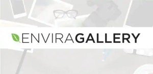 Read more about the article Envira Gallery 1.8.11 – WordPress Gallery Plugin