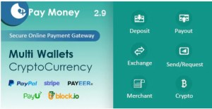 Read more about the article PayMoney 2.9 Nulled – Secure Online Payment Gateway