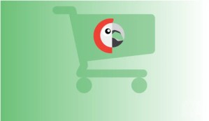 Read more about the article Polylang for WooCommerce 1.5.5 – Multilingual WooCommerce Store