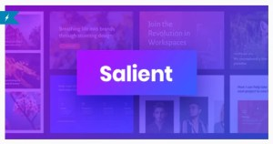 Read more about the article Salient 13.0.5 – Responsive Multi-Purpose WordPress Theme