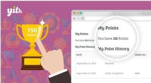 Read more about the article YITH WooCommerce Points and Rewards Premium 2.0.7