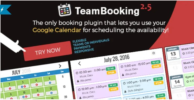 You are currently viewing Team Booking 2.5.11 – WordPress booking system