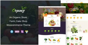 Read more about the article Organiz 2.2 – An Organic Store WooCommerce Theme