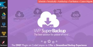 Read more about the article Super Backup & Clone 2.3 – Migrate for WordPress