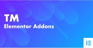 Read more about the article TM Elementor Addons 3.2