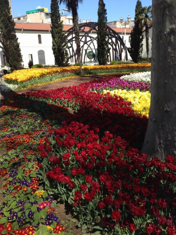 Gulhane Park tulips 2015