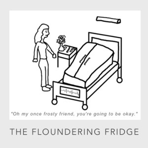The Floundering Fridge