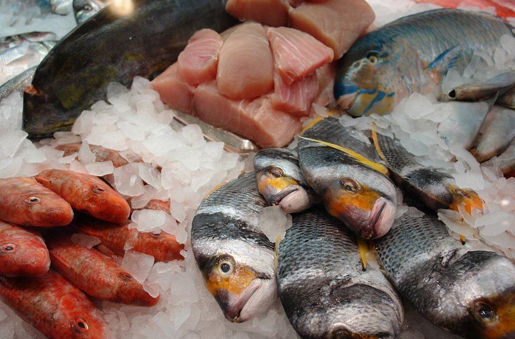 ¿Cuánto pescado comemos?