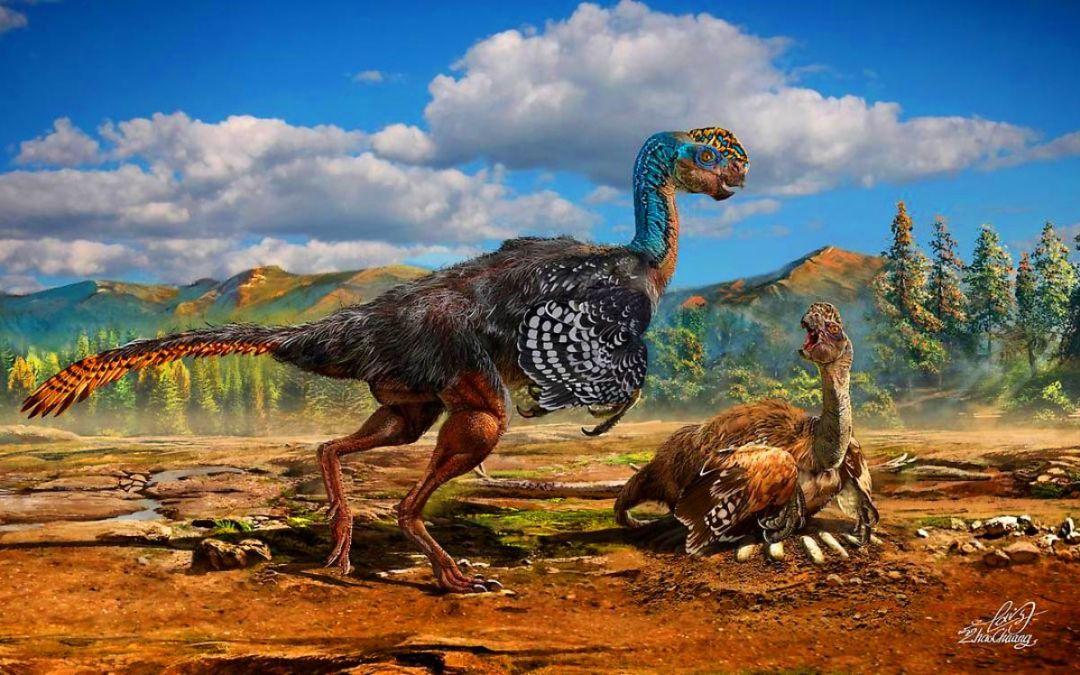 Dinosaurios emplumados: el origen de las aves