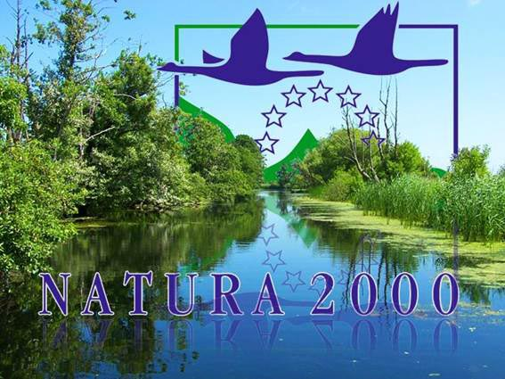 Natura 2000 networking programme, working together to conserve the biodiversity