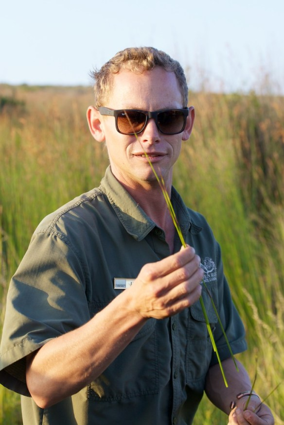 Hannes pointing out some paintbrush reeds  (c) Allyson Scott