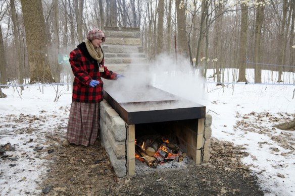 Maple sap boiling in pans