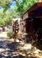 Shop at Wimberley Market Day