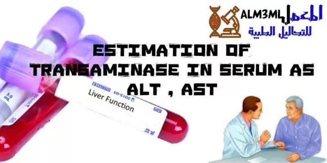ALt---Ast-tests