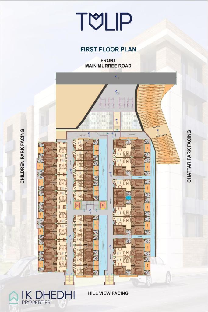 Tulip apartments First Floor Plan