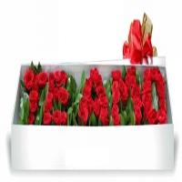 Flores y regalos aniversario