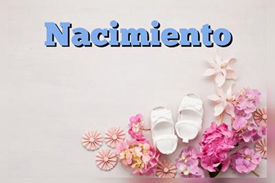 Arreglos florales y regalos para Nacimiento. Floristería ALMA FLORAL Bogotá