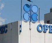 توقعات بانهيار منظمة الأوبك مع استمرار تراجع أسعار البترول