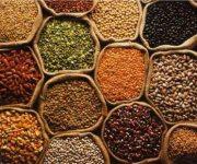 مصر توقف تصدير جميع البقوليات 3 شهور
