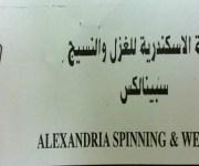 «الإسكندرية للغزل» تؤجل مزاد بيع 22 ألف متر لأجل غير مسمى