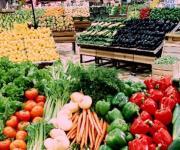 ارتفاع صادرات مصر الزراعية إلى أكثر من 5 ملايين طن