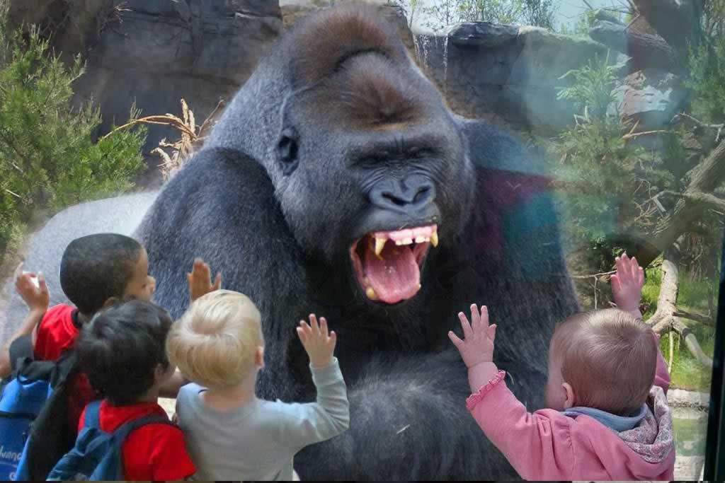 حدائق الحيوان بالخارج