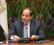 السيسي يوجه الحكومة بتطوير صناعة الغزل وإعادة القطن المصري لسابق عهده