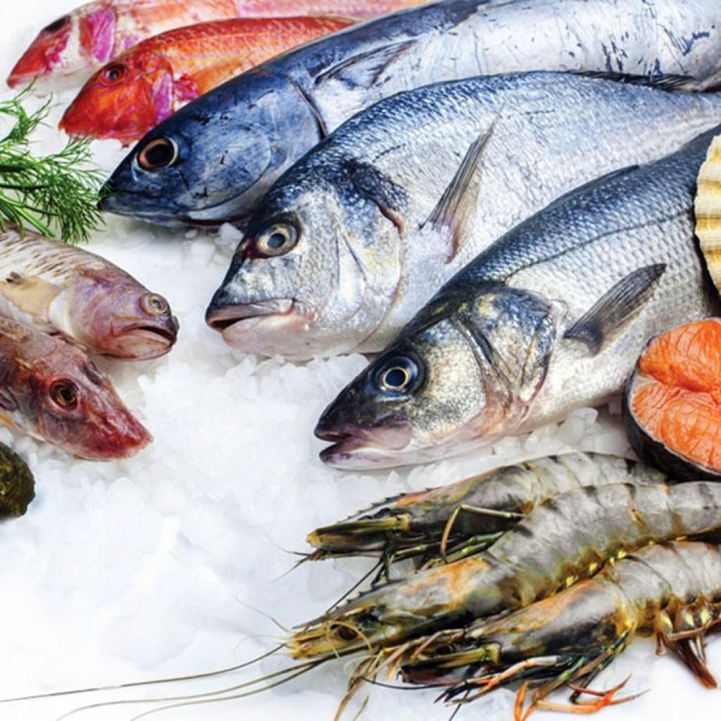 أسعار السمك فى مصر اليوم