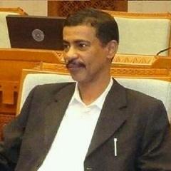 الكاتب : محمد العولقي