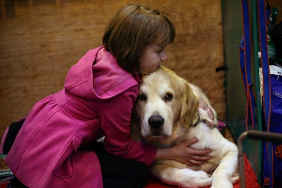 Los perros odian que les abracen todo el tiempo, es una de las cosas que les rompe el corazón