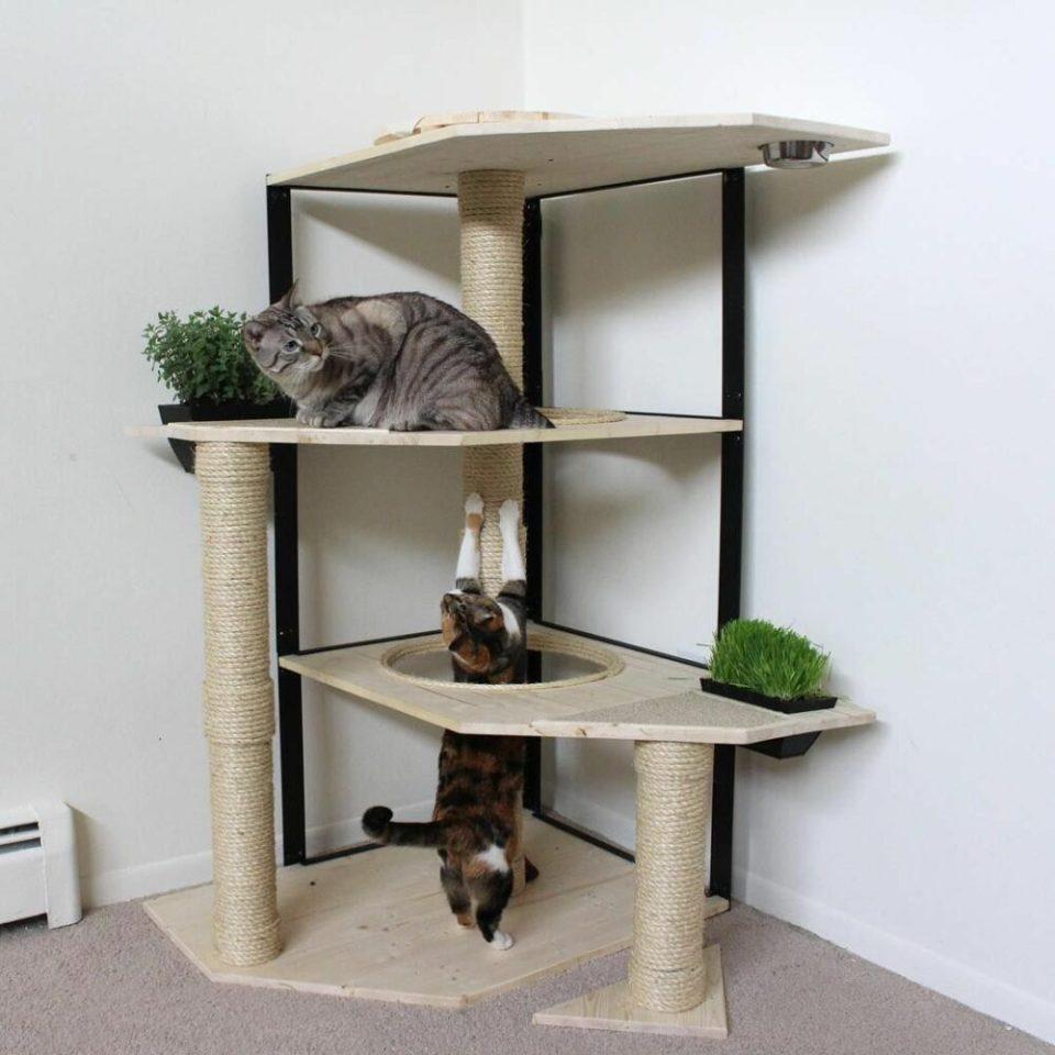 Original rinconera para gatos: divertida, eco y funcional