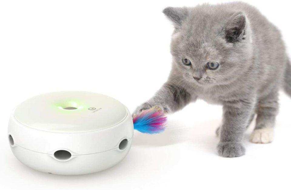 juguetes interactivos para gatos de todo tipo