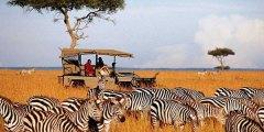 تقرير متكامل عن السياحة في كينيا