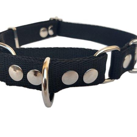 Collar martingale para perro