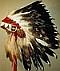 Crow warbonnet