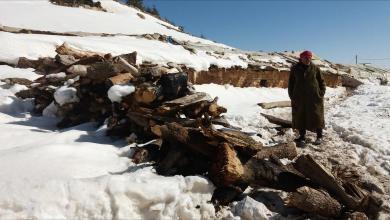 Photo of شبكة صحية تحذر الحكومة من ارتفاع عدد الوفيات نتيجة موجة البرد القارس