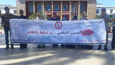 "Photo of ""الأساتذة المرسبون"" يحتجون أمام البرلمان ويجددون مطالبتهم بحقهم ""المسلوب"""