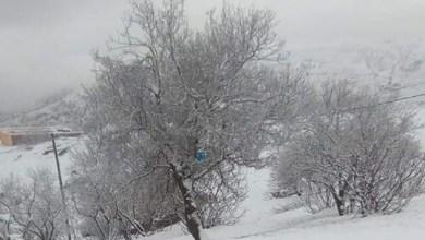 Photo of مديرية الأرصاد الجوية تنفي وجود عواصف ثلجية أو مطرية خلال الـ15 يوما المقبلة