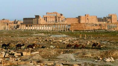 Photo of 70 هيئة حقوقية عربية ضمنها المغرب تدعو إلى استحضار الجانب الإنساني في الحرب ضد كورونا