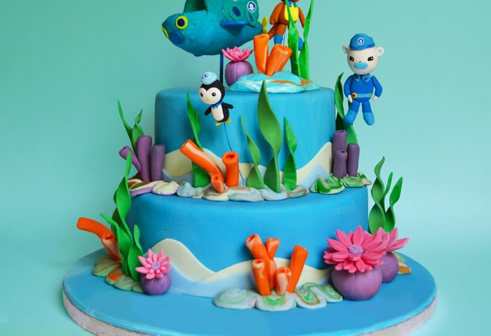Birthday Cake Ideas For 5 Year Old For Boy Birthday Cakes For Boys